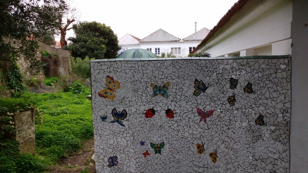 blogue_ideia-fixe-2019-será-o-ano-das-borboletas