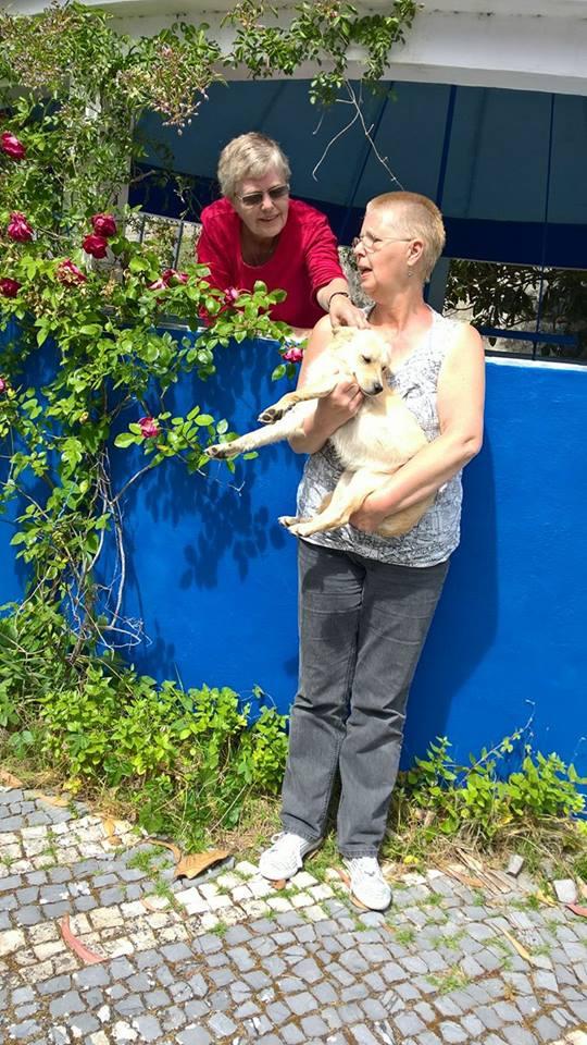 duas-mulheres-com-uma-cadela