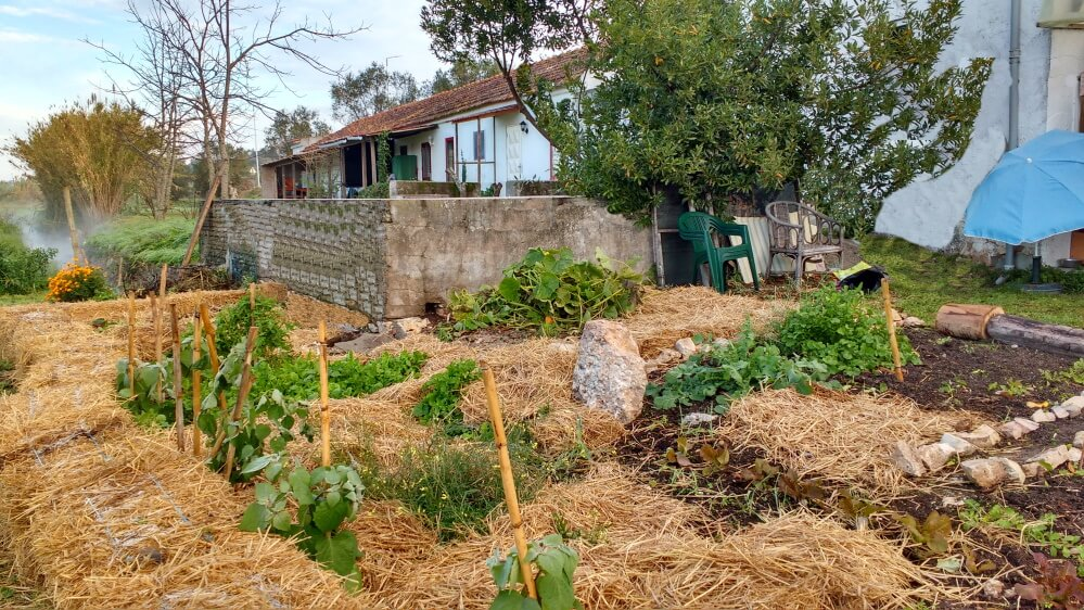 blog_holiday-rentals-with-vegetable-garden