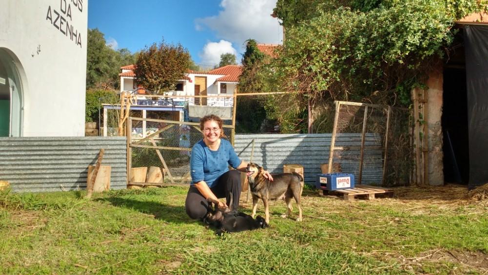 blogue_os-nossos-fofos-cachorros-e-asilo