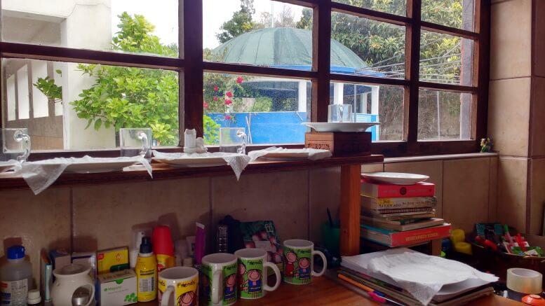 sementes-quase-prontas-na-cozinha-de-Termas-da-Azenha