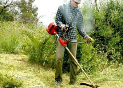 cutting-grass-by-volunteers