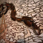 mozaiek-detail-in-badkamer-van-Casa-Oliveira