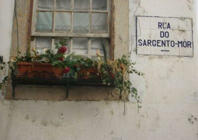 surroundings_the-sign-of-a-street-and-a-flowerpot-next-to-it-1-1