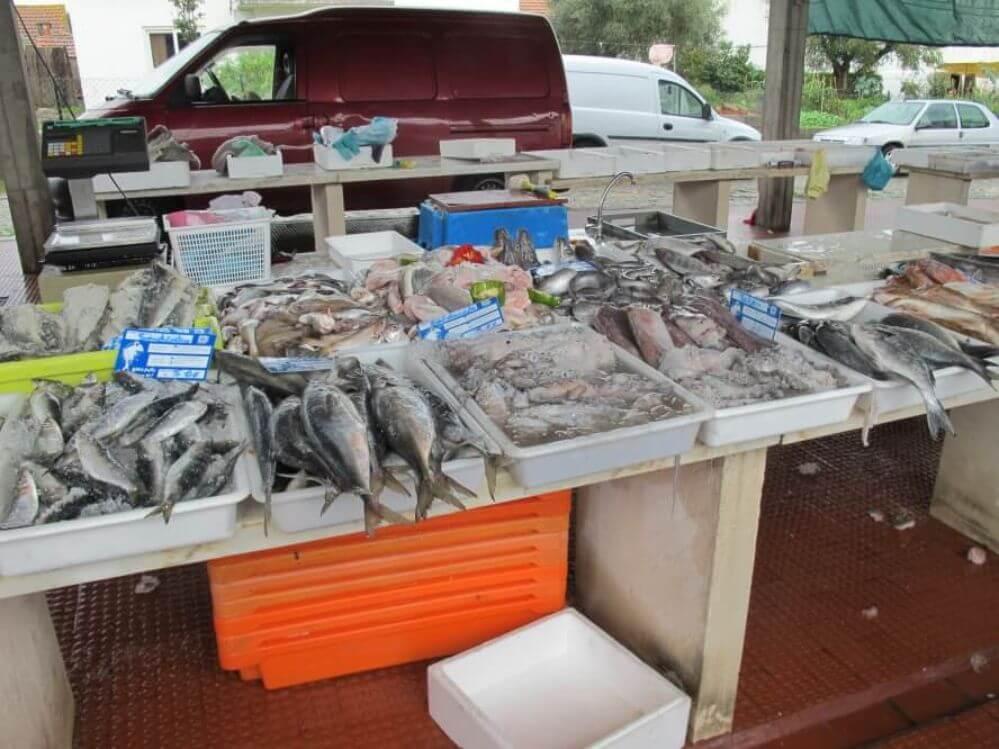 arredores_peixe-no-mercado-em-Louriçal