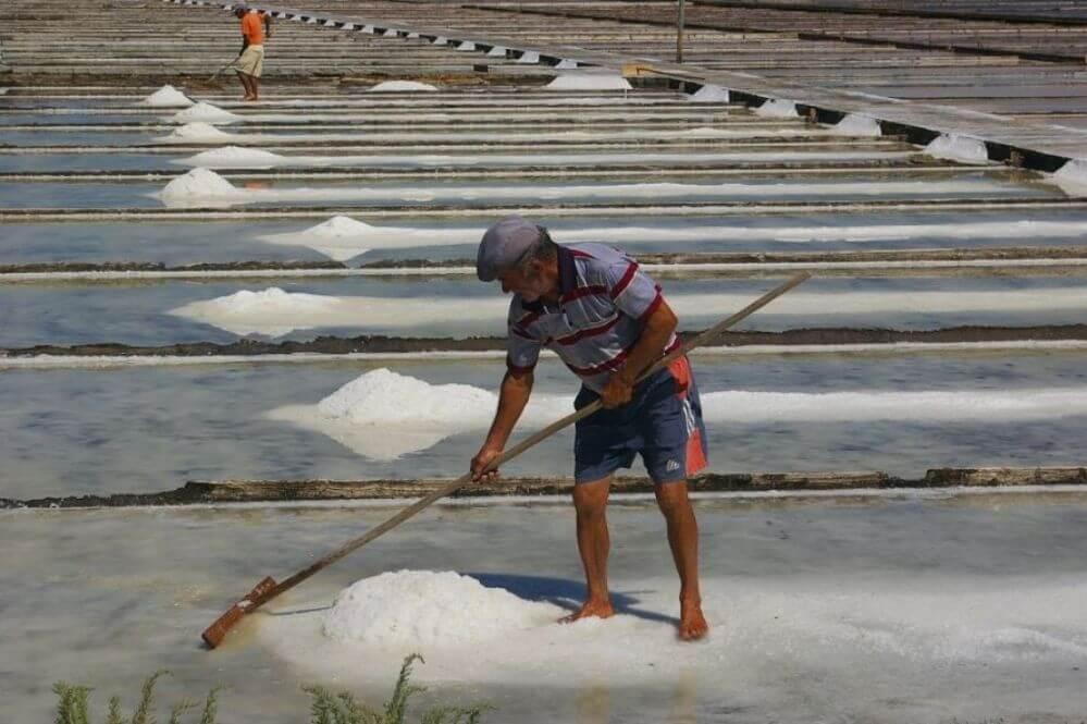 omgeving_zoutvelden-bij-Figueira-da-Foz
