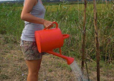 volunteers_watering-the-plants