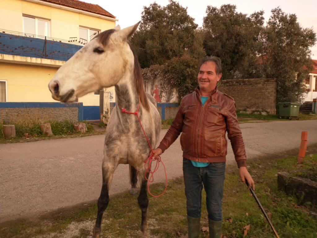 baasje van het paard in portugal